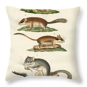 Different Kinds Of Sleepers Throw Pillow
