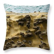 Differential Erosion Throw Pillow