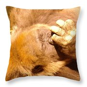 Digging For Gold Throw Pillow