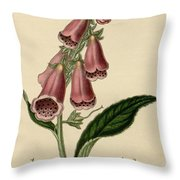Digitalis  Throw Pillow by Philip Ralley