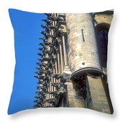 Dijon Cathedral Throw Pillow