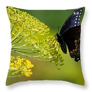 Dill And The Butterfly Throw Pillow