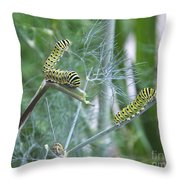 Dillweed And Caterpillars Throw Pillow