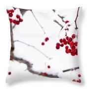 Dingle Berries II Throw Pillow