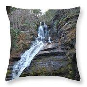 Dingman Falls Throw Pillow