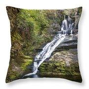 Dingmans Falls Throw Pillow