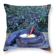 Dinner Anyone? Throw Pillow