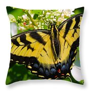Dinner For The Swallowtail Throw Pillow