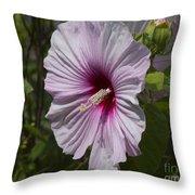 Dinner Plate Hibiscus Throw Pillow