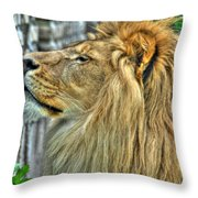 Dinner Time...can't You Smell It...lazy Boy At The Buffalo Zoo Throw Pillow