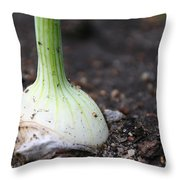 Dinner's Growing Throw Pillow
