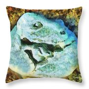 Dinosaur Hatch At Pismo Beach California Throw Pillow