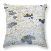 Dinosaur Tracks Throw Pillow