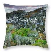 Dinosaur Trees Throw Pillow