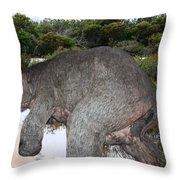 Diprotodon Throw Pillow