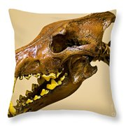 Dire Wolf Skull Fossil Throw Pillow