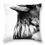Direction Of The Blackbird  Throw Pillow