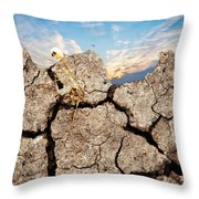 Dirt And Sky Throw Pillow