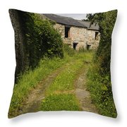 Dirt Path To Stone Building Throw Pillow