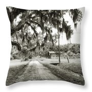 Dirt Road On Coosaw Plantation Throw Pillow