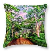 Dirt Road To Secret Beach On Kauai Throw Pillow