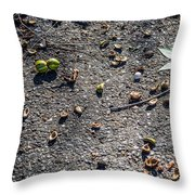 Dirty Dishes - Squirrel Style Throw Pillow