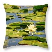 Dirty Monet Throw Pillow
