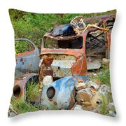 Disaster Throw Pillow