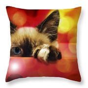 Disco Kitty 1 Throw Pillow