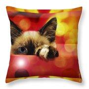 Disco Kitty 2 Throw Pillow