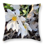 Discovery In The Woods Throw Pillow