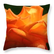 Discriminating Throw Pillow