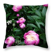 Display Of Romance Throw Pillow