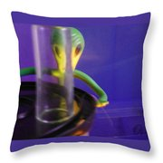 Disrobin' For A Probin' Throw Pillow