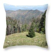 Distant View - Mount Lemmon Throw Pillow
