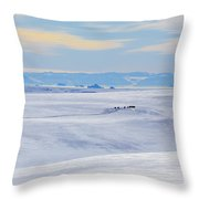 Distant View Of A Musk Ox And Snow Throw Pillow