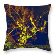 Dried Up Tree Throw Pillow
