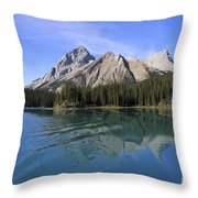 Distorted Throw Pillow