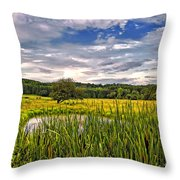 Ditch Dreaming Throw Pillow