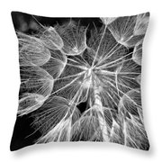 Ditch Lace Bw Throw Pillow