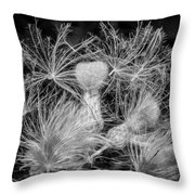 Ditch Party 2 Bw Throw Pillow