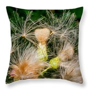 Ditch Party 2 Throw Pillow