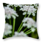 Divergence Throw Pillow