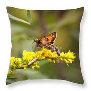Diversity - Insects Throw Pillow