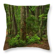Diverted Paths Throw Pillow