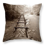 Diverted Throw Pillow