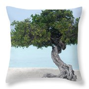Divi Divi Tree In Aruba Throw Pillow