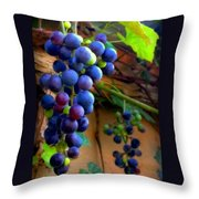 Divine Perfection Throw Pillow