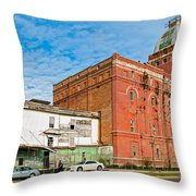 Dixie Beer Throw Pillow