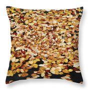 Dizzy Db Throw Pillow